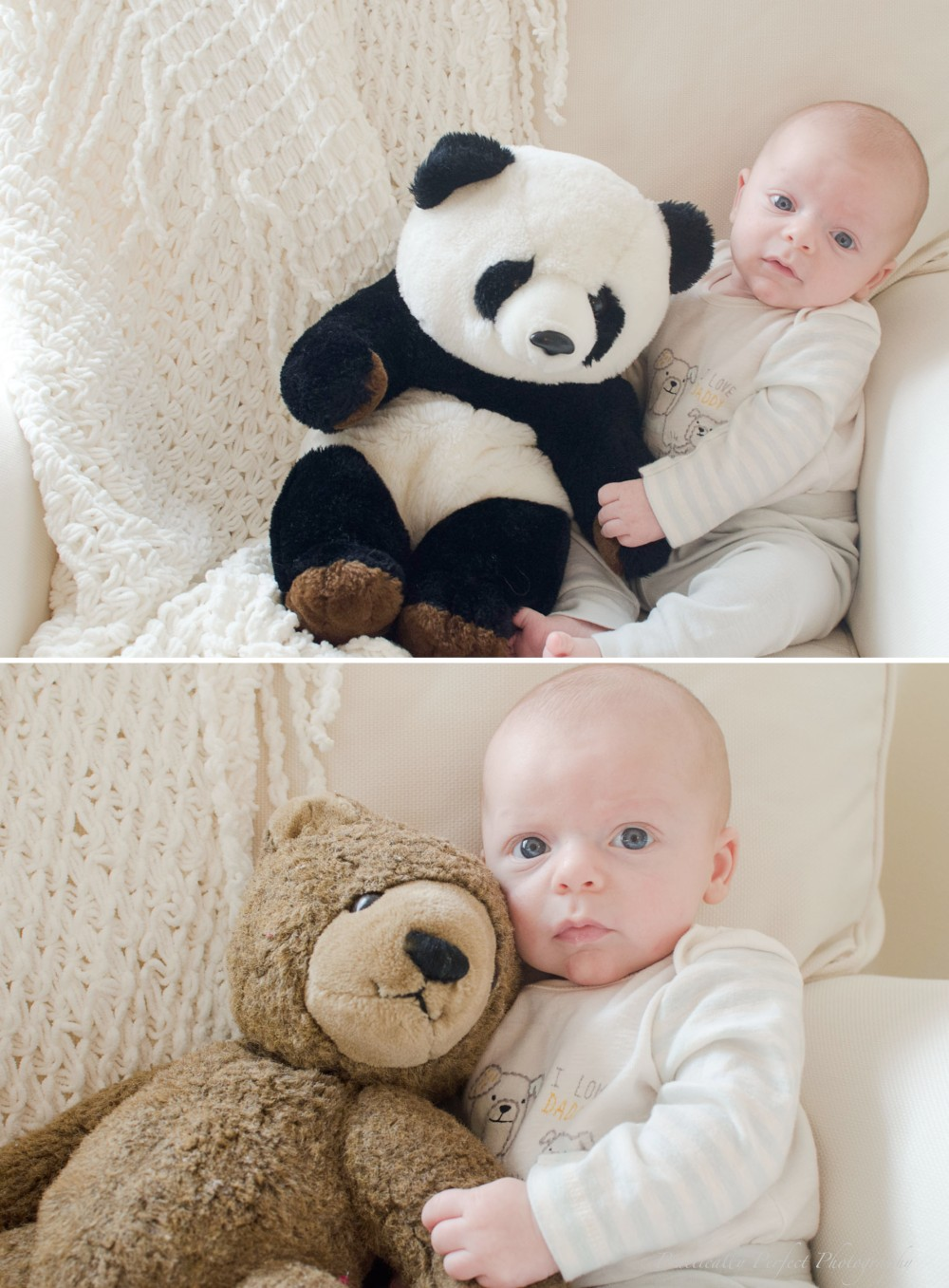 Top: Mom's old teddy Bottom: Dad's old teddy