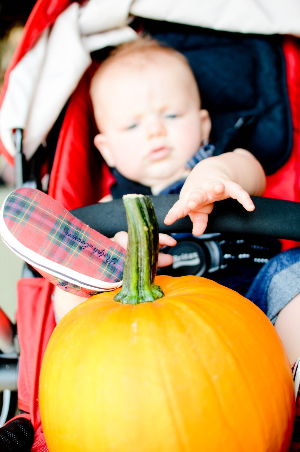 Pumpkin patch and ralph lauren shoes go hand and hand.